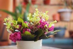 Een kop van kleurrijke roze bloem royalty-vrije stock foto