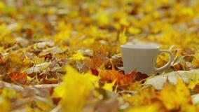 Een kop van koffie stock video