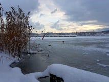 Een koude de winterdag Royalty-vrije Stock Afbeeldingen