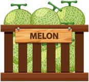 Een krat van meloen stock illustratie