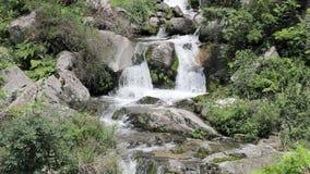 Een kreek in de rotsen in het bos stock video