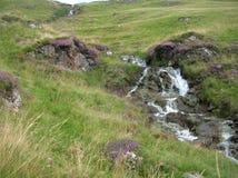Een kreek gecombineerd met purpere heide die Groene Heuvels bij Glenshee-Vallei, Grampian-Bergen, Schotland reduceren stock afbeeldingen