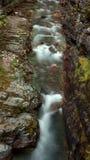 Een kreek in het Nationale Park van de Gletsjer royalty-vrije stock fotografie