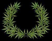 Een kroon van cannabis op een zwarte achtergrond Stock Foto's