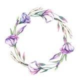 Een kroon van de bloem van waterverfeustoma isoleert op witte backgroun Royalty-vrije Stock Afbeeldingen