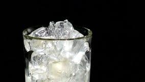 Een kubus die van ijs in een glas water vallen sluit stock footage