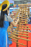 Een kunstenaar voert een traditioneel muziekinstrument van Vietnam bij een gebeurtenis uit stock fotografie