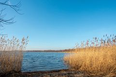 Een kust van een meer bij schemer stock afbeelding