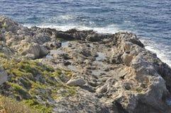 Een kustklip Stock Afbeelding