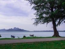 Een kustweg Stock Fotografie