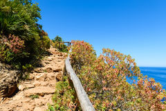 Een kustweg royalty-vrije stock fotografie