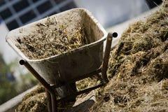 In een landbouwbedrijf Royalty-vrije Stock Foto's