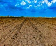 Een landbouwbedrijf royalty-vrije stock afbeelding