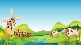 Een landbouwbedrijf met een schuur en koeien vector illustratie