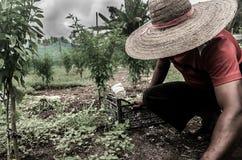 Een landbouwer Royalty-vrije Stock Foto