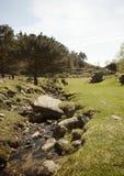Een landbouwersweg Stock Afbeelding