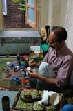 Een landelijke mens die op een document vakje in Kashmir, India schilderen Royalty-vrije Stock Fotografie