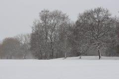 Een landschap volgens de winter stock foto