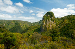 Een landschapsbeeld van mooie vallei in Coromandel, Nieuw Zeeland Royalty-vrije Stock Foto