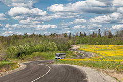 Een landweg door en het bos Royalty-vrije Stock Afbeelding