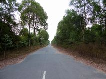 Een lange lege landweg in Vietnam Stock Fotografie