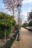 Een lantaarn en een oranje boom bij het park van Granada Stock Foto