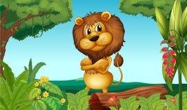 Een leeuw die zich in het hout bevinden Stock Fotografie