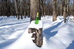 Een lege fles champagne bevindt zich in de sneeuw op een stomp van een felled boom in het bos stock foto