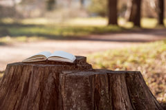 Een lege notitieboekje of een agenda met open pagina's Stock Afbeeldingen