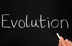 Een leraar het schrijven evolutie. Royalty-vrije Stock Afbeelding