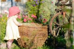 Een leuk meisje zit op een hooi in een mand in de tuin stock afbeelding