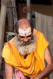 Een Liefhebber van Shiva Royalty-vrije Stock Foto's