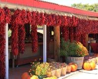 Een lijn van rode droge bossen van Spaanse pepers stock foto's