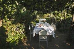 Een lijst in de schaduwrijke tuin onder de boog van rijpe zwarte druiven royalty-vrije stock fotografie