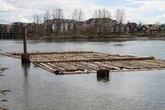 Een logboekboom bond tot zich het opstapelen in een rivier stock afbeeldingen