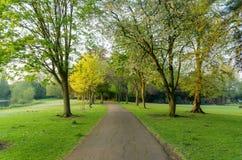 Een lokaal park met een weg Royalty-vrije Stock Fotografie