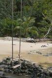 Een loneyschommeling dichtbij het strand en vreedzaam stock foto's