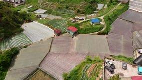 Een luchtfoto van Kea Farm in Cameron Highlands, Maleisië stock video