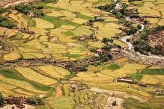 Een luchtmening van gebieden tijdens het oogsten tijd in Leh-Vallei, Ladakh, Jammu en Kashmir, India Royalty-vrije Stock Foto's