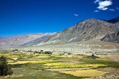 Een luchtmening van Padum, Zanskar-Vallei, Ladakh, Jammu en Kashmir, India Royalty-vrije Stock Foto