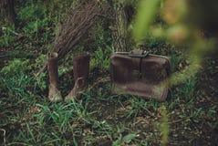 Een magische reis in de tuin Stock Afbeelding