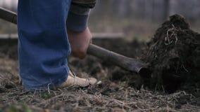 Een man been in jeans graaft een schop in de grond stock footage