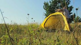 Een man en een vrouw zijn vestiging een tent in een bosopen plek Tijdoverlappingen stock video