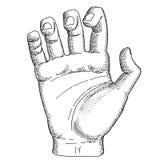 Een man hand Stock Afbeelding