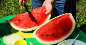 Een man snijdt een watermeloen in stukken met een mes stock video