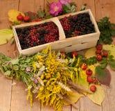 Een mand met rijpe bessen en een boeket van ingediende bloemen op een houten die oppervlakte wordt met heupen en de herfst wordt  Stock Afbeelding