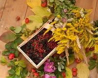 Een mand met rijpe bessen en een boeket van ingediende bloemen op een houten die oppervlakte wordt met heupen en de herfst wordt  Stock Foto