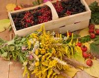 Een mand met rijpe bessen en een boeket van ingediende bloemen op een houten die oppervlakte wordt met heupen en de herfst wordt  Royalty-vrije Stock Foto's