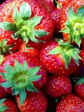 Een mand van rode en zoete aardbeien royalty-vrije stock afbeeldingen