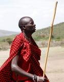Een Masai-strijder die met een stok dansen stock fotografie
